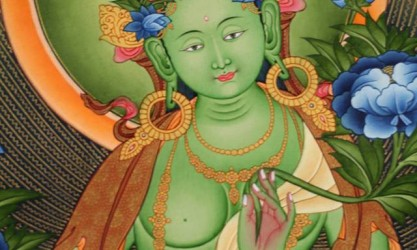 tara-verte pour site himalaya